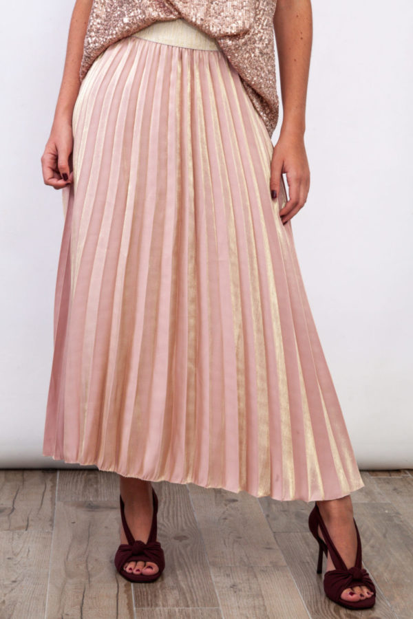Litmus Pleated Skirt